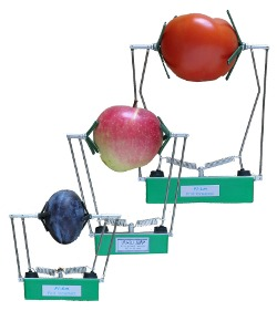 FI-LM, FI-MM, FI-SM Fruit Growth sensors on fruits